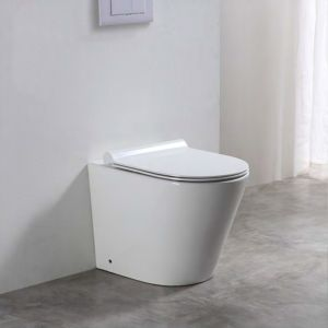 Baku Back-to-Wall Toilet
